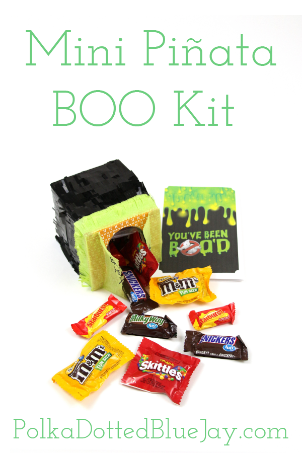 Mini Pinata Boo Kit