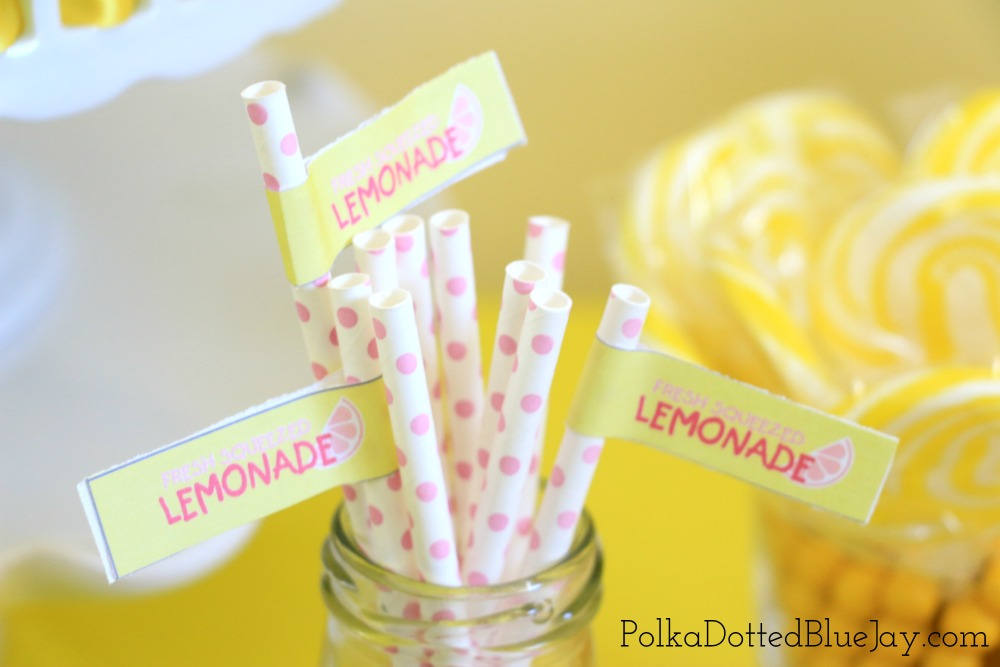 Everything you need for a pink and yellow lemonade themed party! Click here to see all the details and get the links for the products I used for this lemonade party.